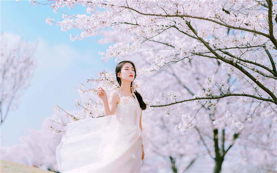 《十里春风伴有你》小说全章节免费在线阅读